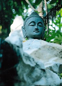Карта Будды 31 - Связь с Законом