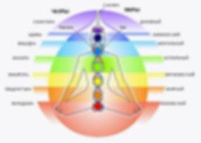 Энергетическая система организма и функционирование жизненной энергии. Биоэнергетическая система человека. По большому счету энергия Рейки работает вне зависимости от того, знает ли проводник тонкости энергетическогро устрой¬ства человека или не имеет о них никакого представления. Тем не менее обладатель подобных знаний легче пройдет дорогу от уче¬ника к Мастеру, ему проще будет ориентироваться в возможных ситуациях, связанных с возникновением и протеканием того или иного расстройства, и соотвественно эффективность воздействия будет выше.