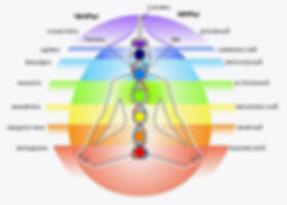 Энергетическая система организма и функционирование жизненной энергии