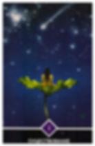 СУЩЕСТВОВАНИЕ – старший аркан. Вы не случайны. Существование нуждается в Вас. Без Вас что-то будет отсутствовать в Существовании, и никто не сможет этого заменить. Именно это дает Вам чувство достоинства – все Существование нуждается в Вас. Звезды, солнце и луна, деревья, птицы и земля – все во вселенной будет чувствовать, что есть небольшое свободное пространство, которое не может быть заполнено никем, кроме Вас.