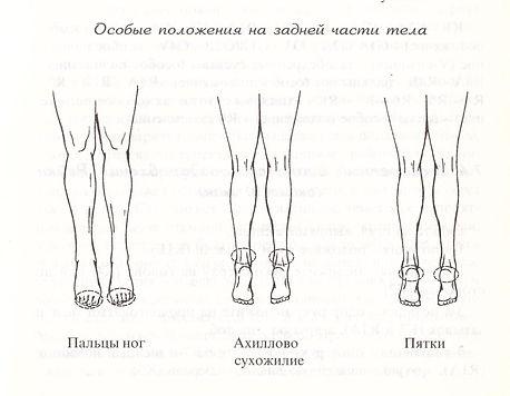 Рейки – Самоздоровление. Положения на ногах