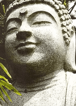 Карта Будды 33 - Будь спокойным, любящим и бесстрашным