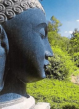 Карта Будды 32 - Без спешки