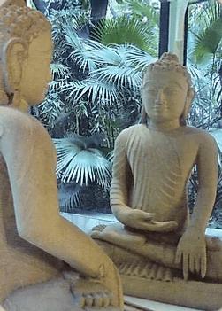 Карта Будды 6 -  Неосуждающий ум