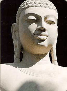 Карта Будды 47 - Жить, бросая вызов