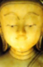 Карта Будды 15. Будь живым и страстным. «Будь живым и страстным, как благородный скакун, не нуждающийся в кнуте» Гуатама Будда.
