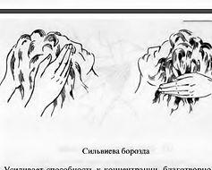 Рейки – Схемы наложения рук. Сильвиева борозда