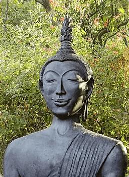 Карта Будды 26 - Осенний лист