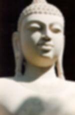 Карта Будды 47. Жить, бросая вызов. «Так сладостно жить, бросая вызов, и быть мастером самому себе» Гуатама Будда.   Мы не бросаем жизни вызов. Мы не пытаемся покорить вершины. Мы не пытаемся экспериментировать. Нас больше привлекают комфорт, спокойствие и безопасность…