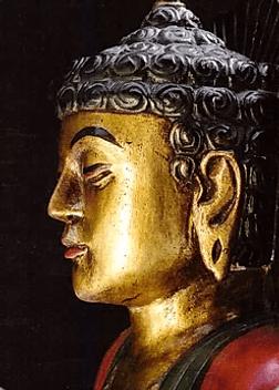 Карта Будда 23 - Свобода