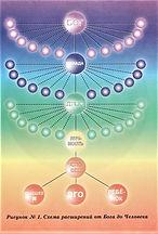 Схемы Эволюции человека