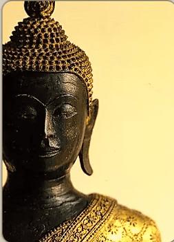 Карта Будды 2 – Быстрый как скаковой жеребец