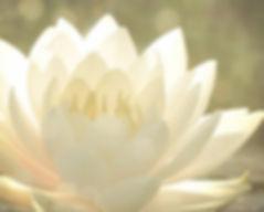 ТАО: Путь Вознесения. О Суждении и о Гармонии. При человеческих отличиях легче пуститься в суждение, чем принять друг друга и необусловленную любовь. В групповом вознесении гармония будет поддерживаться только тогда, когда среди нас достаточное число людей преодолеет суждение и, безусловно, примет всех остальных. Ещё раз предлагаем вам качественно оценить своё собственное внутреннее суждение, и использовать это как возможность освободиться от стереотипов.