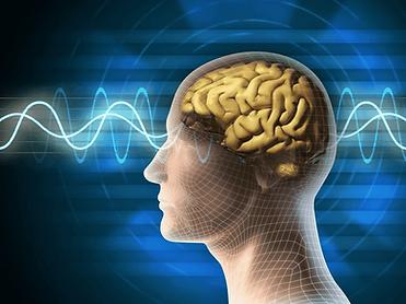 Волновая активность мозга