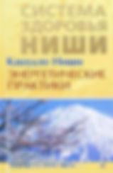 Энергетические практики - Кацудзе Ниши