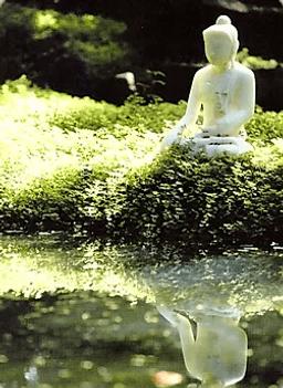 Карта Будды 35 - Сладкий вкус свободы