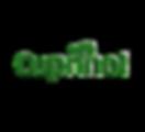 cuprinol-logo.png