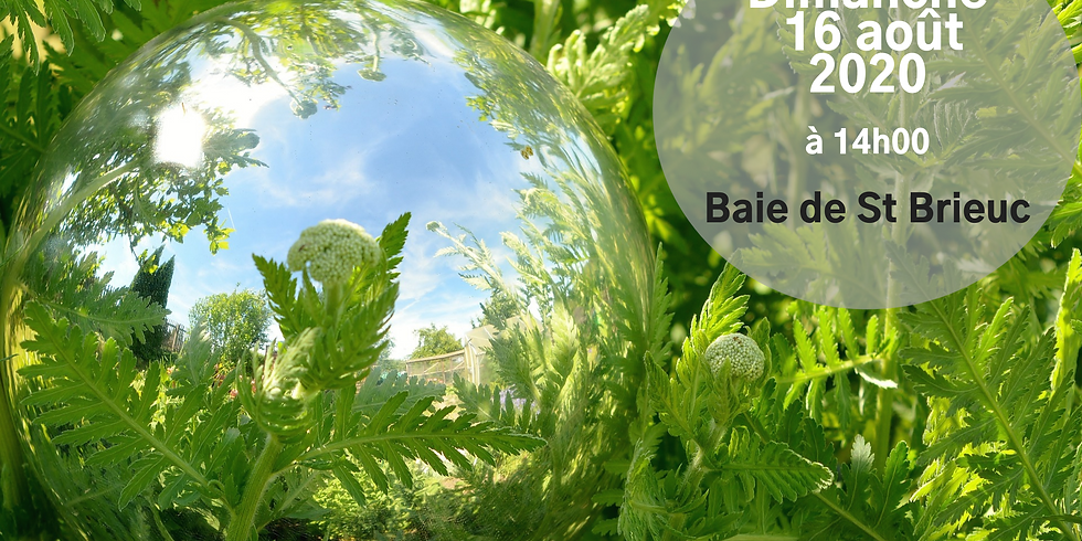 Balade Sophro Nature - Saint Brieuc -Dimanche
