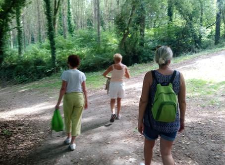 Quelques photos des balades sophro nature cet été à Binic et à St Brieuc (22)
