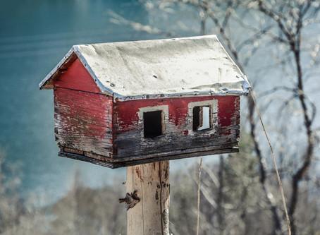 Déconfinement : pourquoi des sentiments antagonistes ? Le syndrome de la cabane