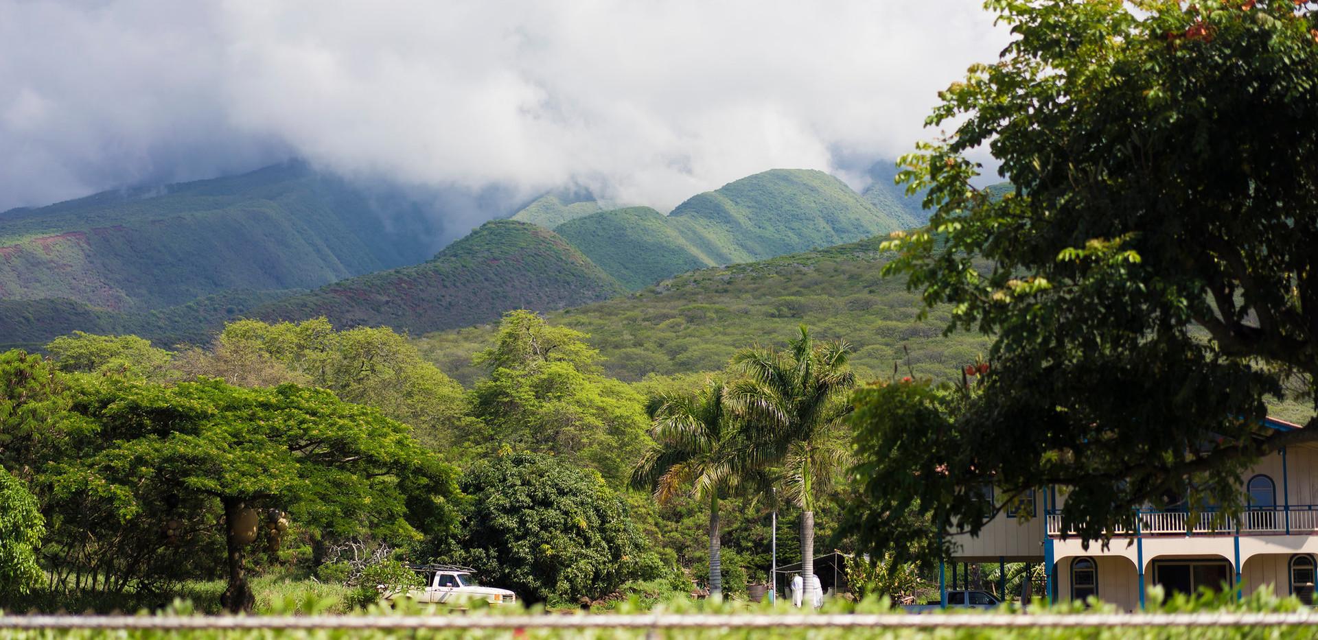 Molokai East End