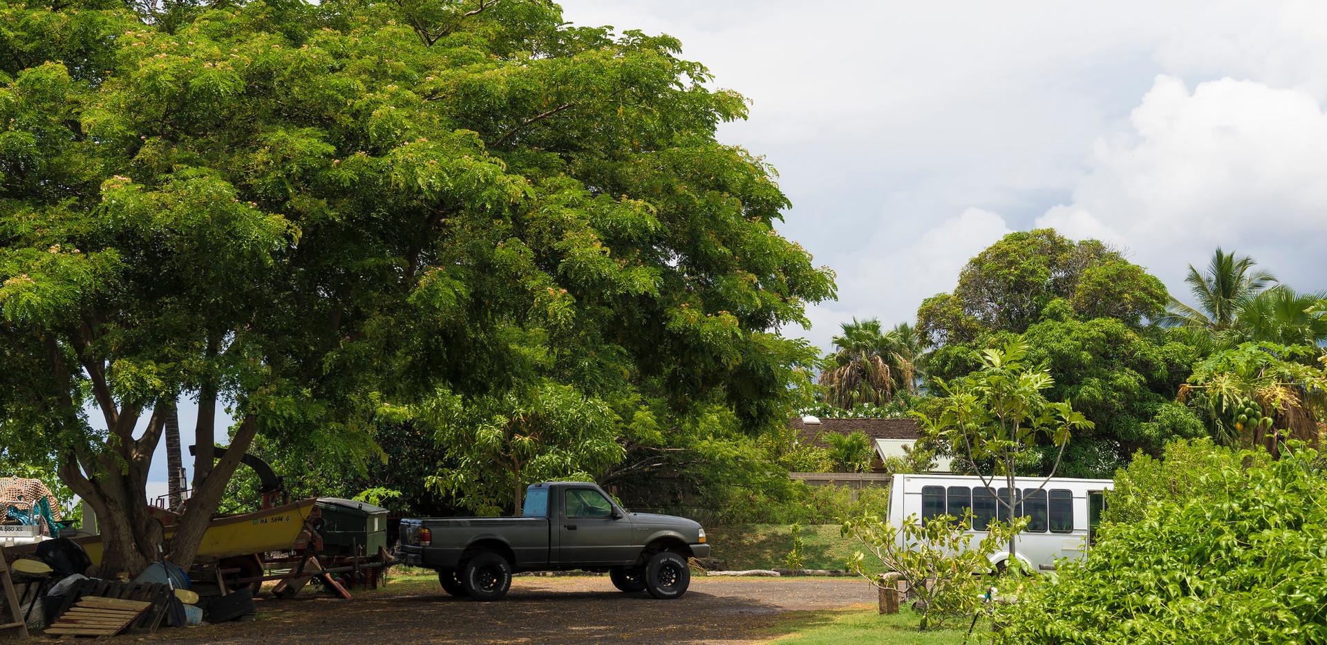 Molokai homestead