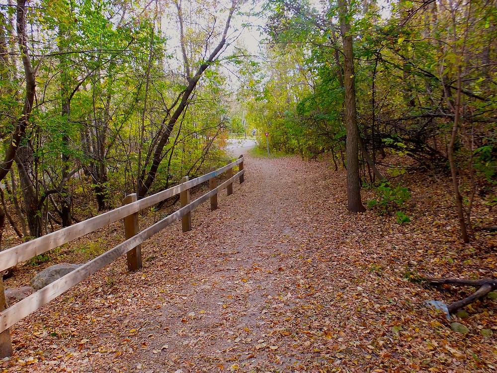 Mill Creek Trail System