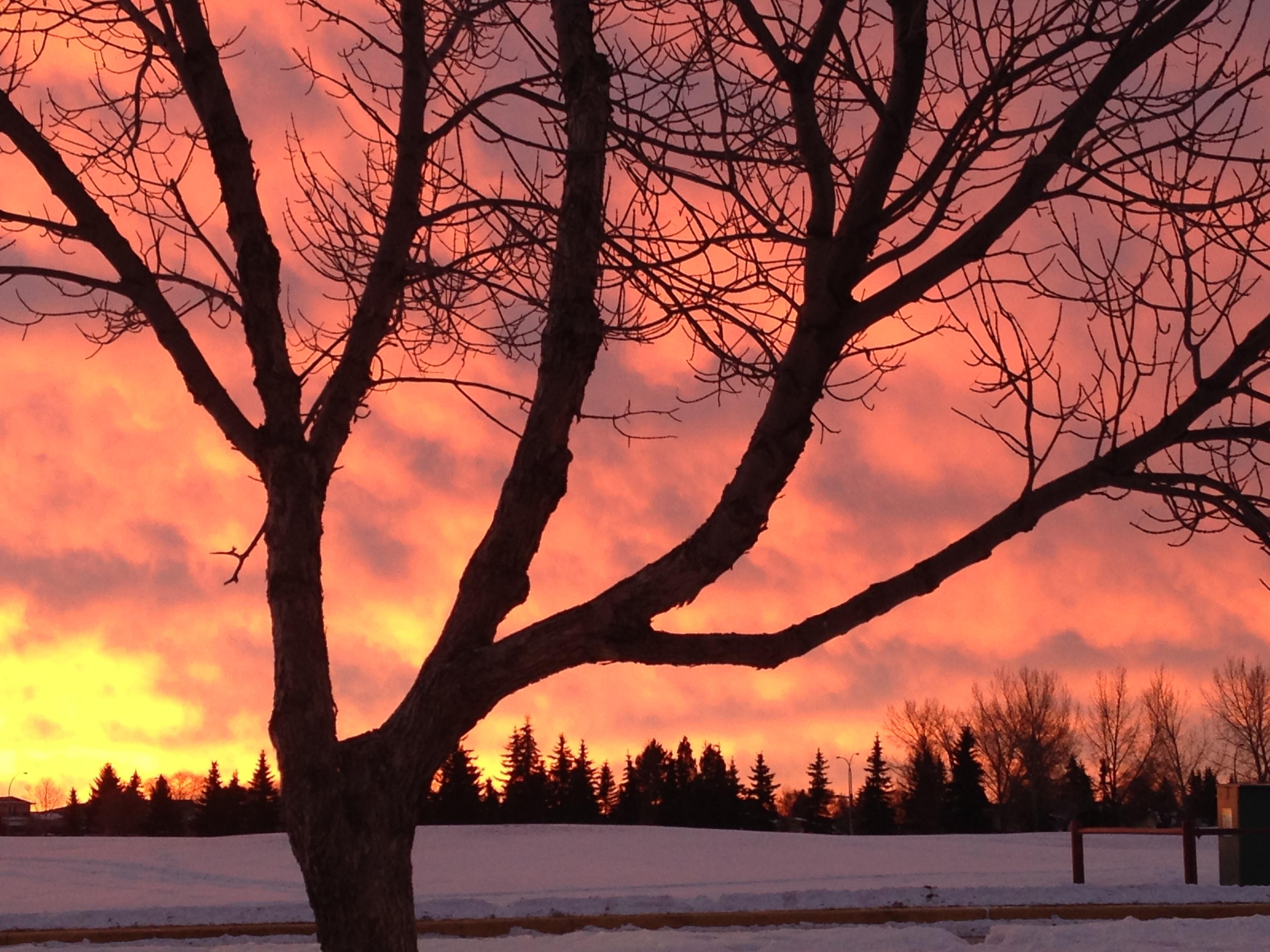 Sunrise south Edmonton