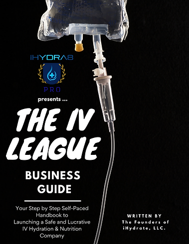 IV Business E-Book.png