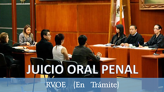 jucicio oral penal.png