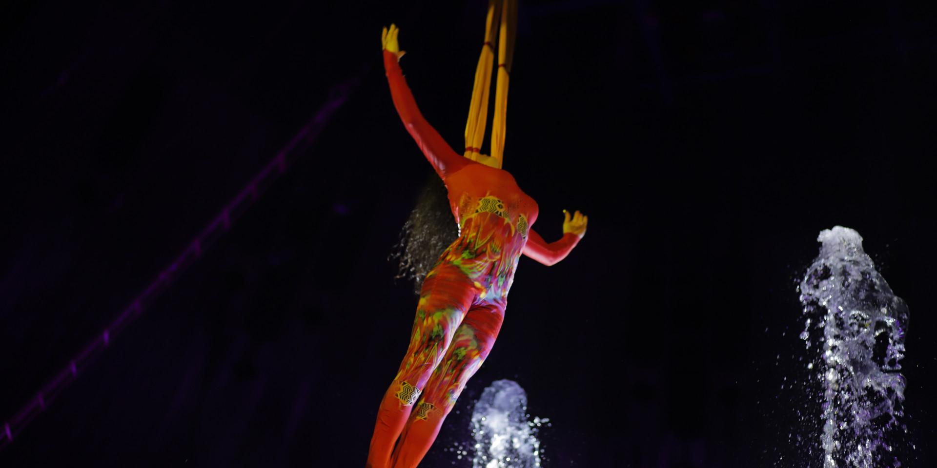 """Цирк на воде """"Ватерленд"""""""