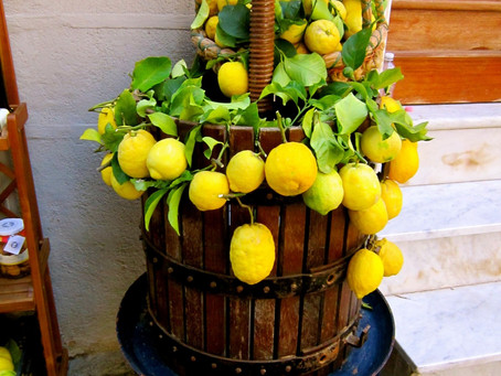 Limoncello- Make your own sunshine in a bottle