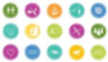 Corporate ID logo.JPG