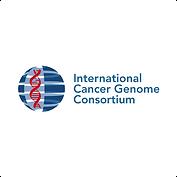 Int-Cancer-Consortium.png
