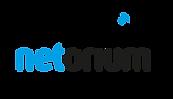 Netorium Logo