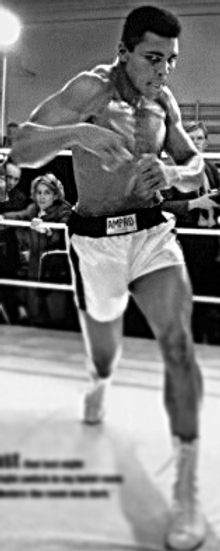 Тренировки по боксу в спб