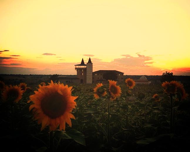 hotel sunset - günbatımı