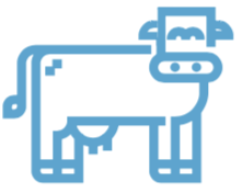 bluecow.png