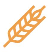 orangewheat.png