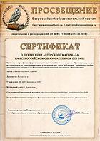 сертификат о публикации.jpg