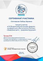 Сертификат Воспитатели России.jpg