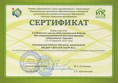 сертификат презентация опыта.jpg