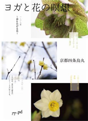 京都で女性のためのヨガレッスンが始まります。