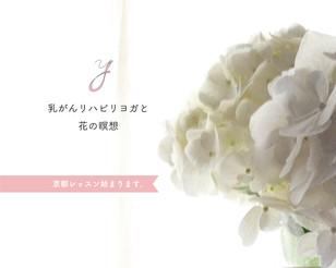 乳がんリハビリヨガ、京都レッスン始まります。