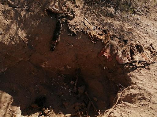 Encuentran fosas clandestinas en zona rural de Hermosillo