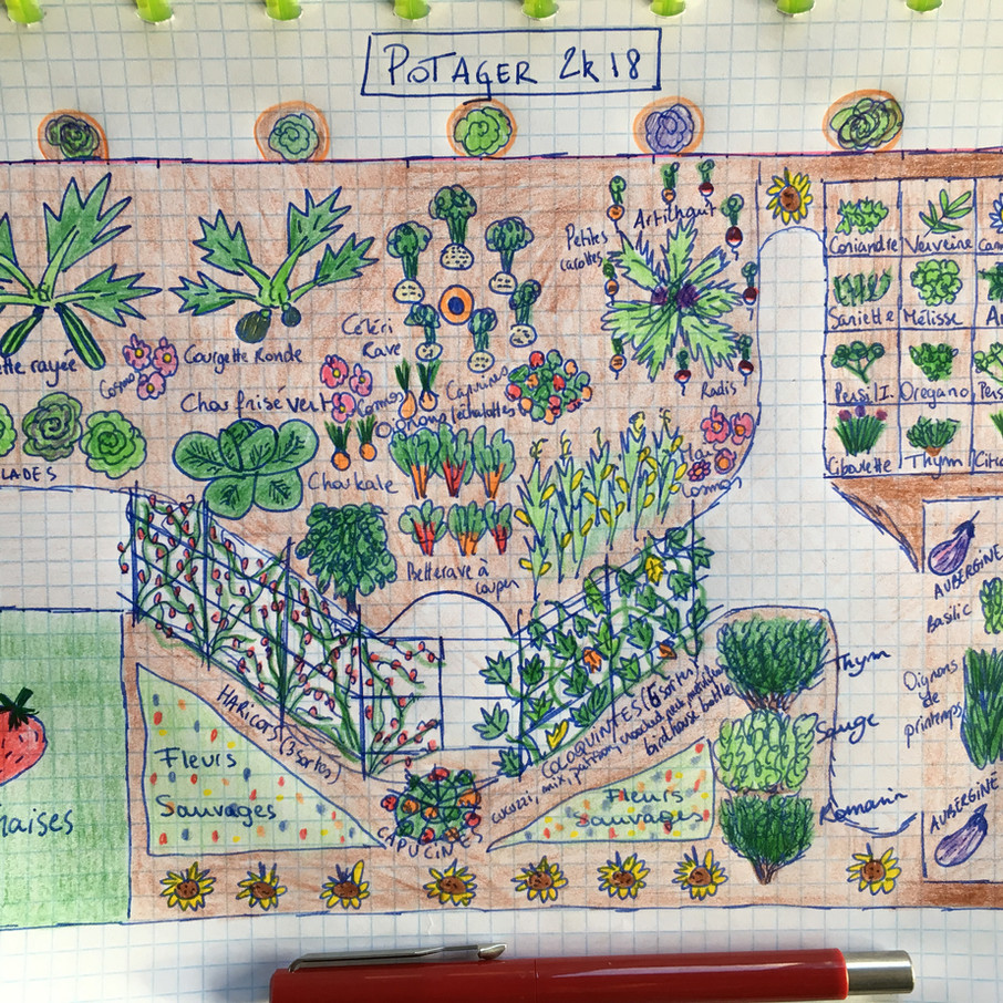 Garden plan 2018
