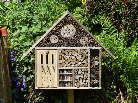 First blog ever - My homemade bug house (EN)