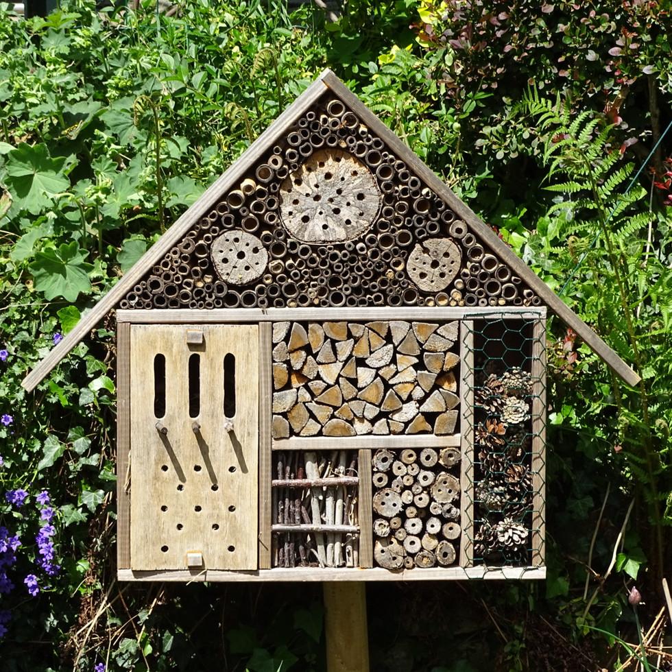 My homemade bug house