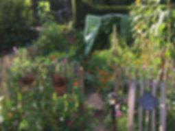 Lovely urban garden