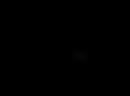 final logo-02.png